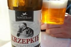 Kormoran_Krzepkie